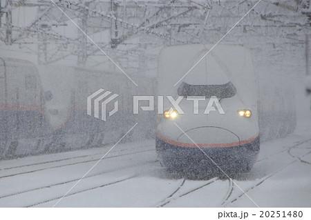 雪の中を行く上越新幹線E4系Max 20251480