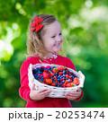 女の子 女子 少女の写真 20253474