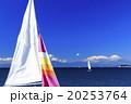 冬のヨット 20253764