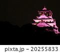 大阪城 城 天守閣の写真 20255833