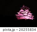 大阪城 城 天守閣の写真 20255834