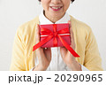 母の日 プレゼント 人物の写真 20290965