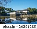 江戸城大手門 20291285