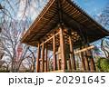 増上寺鐘楼堂 20291645
