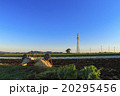 冬晴れの畑 20295456