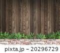 壁 板 木目のイラスト 20296729