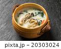 かきのクリームシチュー oyster chowder   20303024