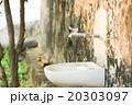 蛇口 水栓 飲み口 20303097
