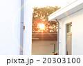 太陽 日 お日様 20303100