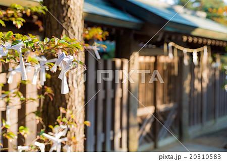 意富比神社(船橋大神宮)境内 おみくじ 千葉県船橋市 20310583
