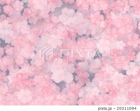 夜桜 薄墨桜 淡墨ザクラ お花見 背景素材 壁紙 宵 サクラ 水彩画 背景イラスト のイラスト素材