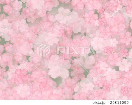 ヤマザクラ サクラ 新緑 桜 山桜 古風 古典的 手書き 手描き 水彩画 背景