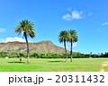 青空 ハワイ 椰子の木の写真 20311432