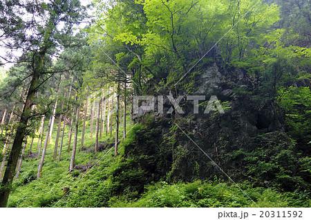 高千穂秋元神社 山伏修行の岩 20311592