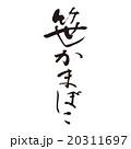 笹かまぼこ 20311697