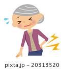 腰 腰痛 シニアのイラスト 20313520