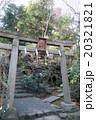 赤坂氷川神社 20321821