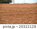 畑の土の写真 20322128