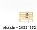 ベンチに座るガイコツ: Skeleton sitting on a bench 20324352