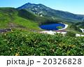 鳥海山 夏 鳥海湖の写真 20326828