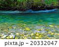 上高地の梓川 20332047