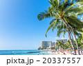 【ハワイ】ホノルル・ワイキキビーチ 20337557
