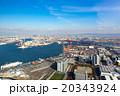 大阪港 - 大阪府咲洲庁舎展望台 20343924