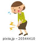 膝 女性 中年のイラスト 20344410