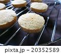 クッキー お菓子 20352589