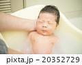 赤ちゃんの沐浴 20352729