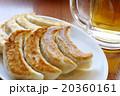 餃子 20360161
