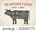 牛肉 ウシ 牛のイラスト 20360772