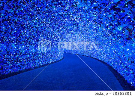 Nabana no Sato garden at night Nagoya. 20365801
