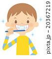 歯磨き 20367219