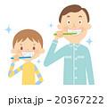 歯磨き 20367222