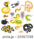Vector flat snakes and other danger animals 20367298