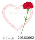 母の日 カーネーション メッセージカードのイラスト 20368662