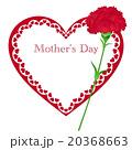 母の日 カーネーション メッセージカードのイラスト 20368663