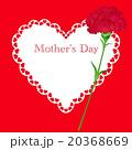 母の日 カーネーション メッセージカードのイラスト 20368669