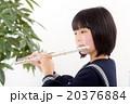 フルートを演奏する中学生 20376884