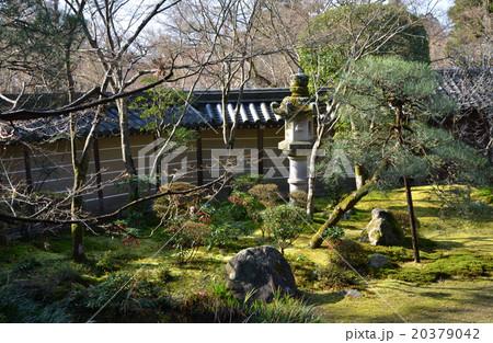 永観堂禅林寺(2016.1) 20379042