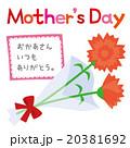 母の日のカーネーションA 20381692