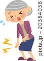 膝 女性 シニアのイラスト 20384036