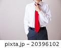ネクタイを締めるビジネスマン 20396102