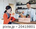 料理の食材を選ぶ店員 20419801