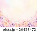 薔薇 花 花柄のイラスト 20426472