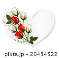 お花 フラワー 花のイラスト 20434522
