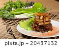 食 料理 食べ物の写真 20437132