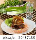 食 料理 食べ物の写真 20437135