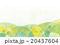 春の背景イラスト 20437604